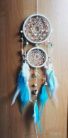 DreamCatcher Welcome to the Balos by TheFallenPrime86
