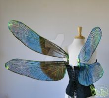 Iridescent Dragonfly Wings for Sebastian, view 2 by FaeryAzarelle