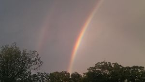 Double Rainbow Left side by sblack397
