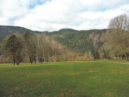 A long walk to Harrison hotsprings~1/29/2015~14 by Mathayis