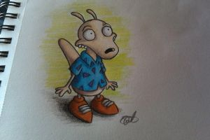 rocko by she3pshe3p