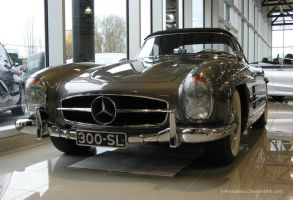 300SL Roadster by S-Amadeaus