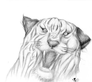 roughly white tiger by 9lack