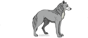 Traced Wolf by Loveisbeautifully
