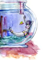 Fishbowl Exchange by Chael by Mermafied