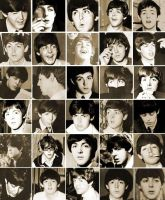 The Beatles- Paul, Paul and More Paul. by pjcb12