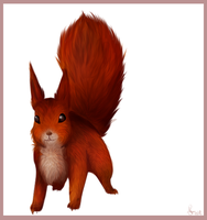 .:Squirrel:. by oOCupcakeOo