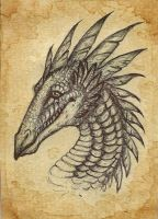atc feathery dragon by Opaca