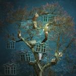 Living With A Tree by Frama