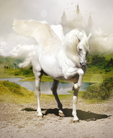 Winged Horse by sylview