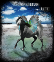 Live is Life - Redo by Syeiraxx