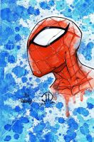 Spiderman Head Watercolors by MetaWorks