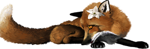 Shy Little Vixen by Mr-Borra