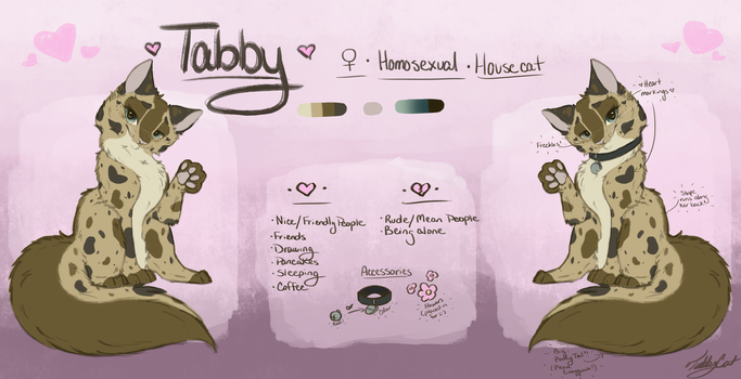|| Tabby Reference Sheet || by TabbyCat0066