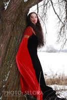 red-black-snowy 09 by lady-narven