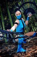 Kitana _ Ultimate Mortal Kombat 3 by dreamerl85