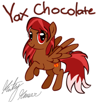 Yax Chocolate by KathyHauser