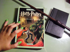 HPCP: Harry Potter and the Chamber of the Secrets by Lillyka