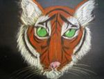 Tiger by spacecats13