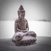 Freezing Buddha by PasoLibre