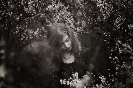 Spring 2013 (III) by herecomesmaddie