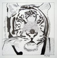 Stippled Tiger by S-H-A-P-E