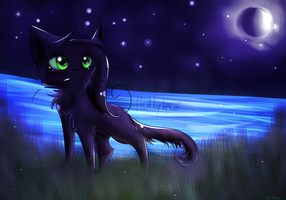 Hollyleaf by SSDOGZII