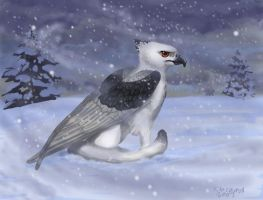 Sad griffin in snow by NetRaptor