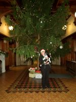 willow, jess and the christmas tree by harrietbaxter