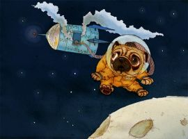 Laika-Pug in space by HanKai