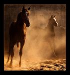 Running a way by Awadh