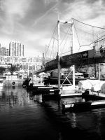 Harbourfront BW by CourageMyLove