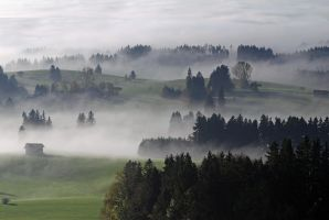 Bavarian Haze II by mutrus