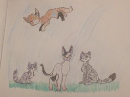 WS | The Mighty Windclan by TurkFish
