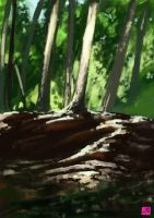 Trees and Rocks by BAproductions