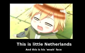 Little Netherlands Demotivational by whatMadnessIsThis