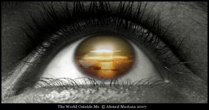 The World Outside Me by mentallydeceased
