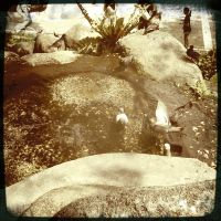 Pigeons in the Water by Eonity