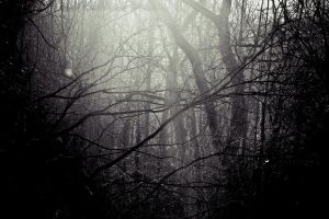 Hollow by Carenza