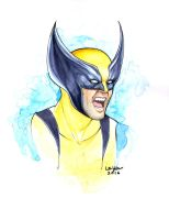 Wolverine Headshot Commission by WeijiC