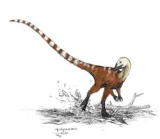 Sinosauropteryx by Ashere