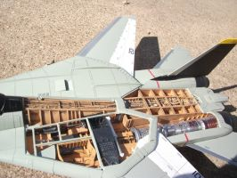 F-14A insides by vash68