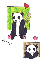 PANDA BEAR by Kiracuils
