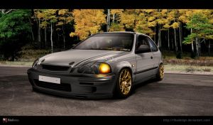 Honda Civic EK9 by RibaDesign