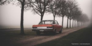 dart in the fog IV by AmericanMuscle