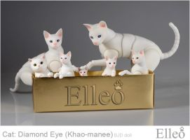Khao-manee Cat Bjd 01 by leo3dmodels