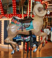 Great Plains Carousel 18 by Falln-Stock