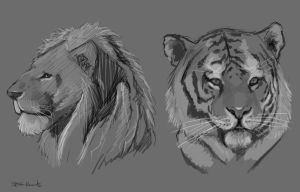 Animal Study by Lonewolf898