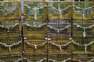 Stock 0107 - Lobster Crates by EverythingIsInStock