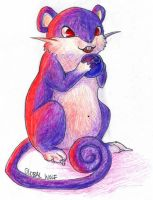 019 Rattata by global-wolf